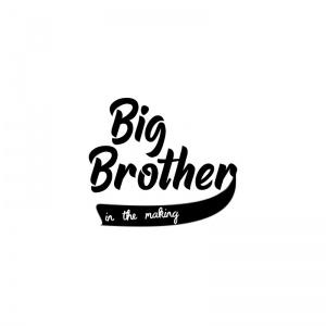 strijkapplicatie big brother inthemaking